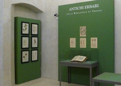 antichi-erbari-della-biblioteca-1