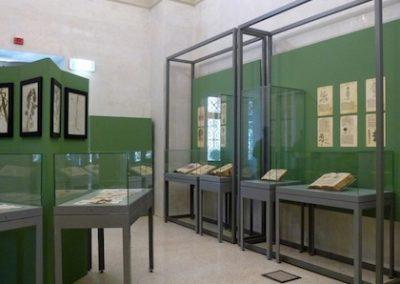 antichi-erbari-della-biblioteca-2