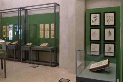 antichi-erbari-della-biblioteca-4