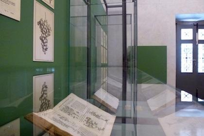 antichi-erbari-della-biblioteca-9